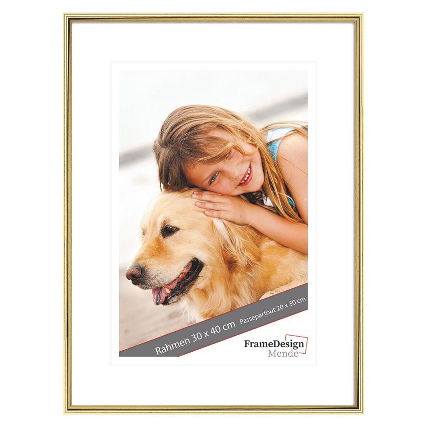 Holzrahmen Lofoi 20x30 cm | Gold | Normalglas