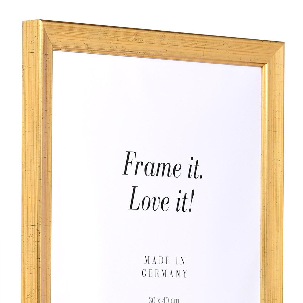 Holz Bilderrahmen Périgueux 50x75 | antikgold | Normalglas