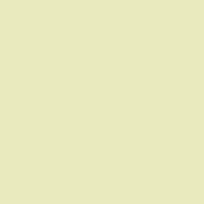 Passepartout Sonderzuschnitt Mintgrün