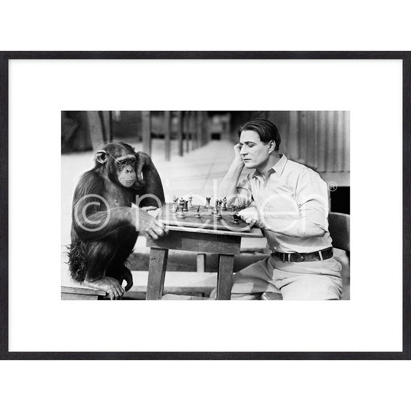 Gerahmte Kunst Monkey chess mit Holz Bilderrahmen Quadrum