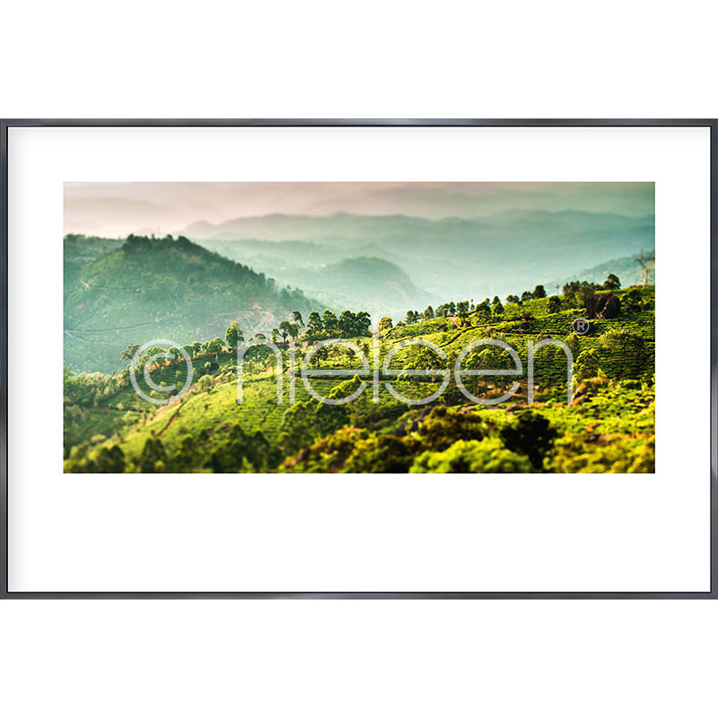 Gerahmte Kunst Landscape of Tea Plantations mit Aluminium Bilderrahmen Alpha